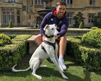 Bath Rugby's rescue dog fan Matt Banahan with Casper the lurcher