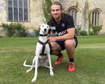 Bath Rugby's dog loving Max Clarke with Casper the lurcher