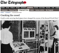 Daily Telegraph / carrier pigeon story coverage