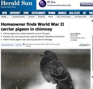 Herald Sun, Australia / WWII pigeon story