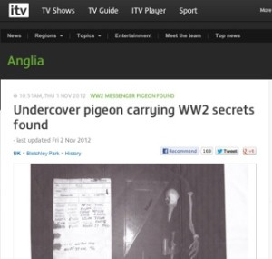 ITV Anglia / pigeon secret story