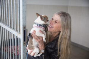 Bath Cats and Dogs Home supporter Sharron Davies hopes canine friends like Chico the chihuahua will benefit from funds raised in its Kennel Break fundraising event