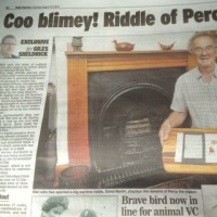 Daily Express / pigeon chimney story
