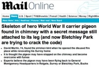Mail Online / hero pigeon story