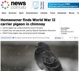 news.com Australia / carrier pigeon story