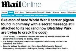 Daily Mail   MailOnline